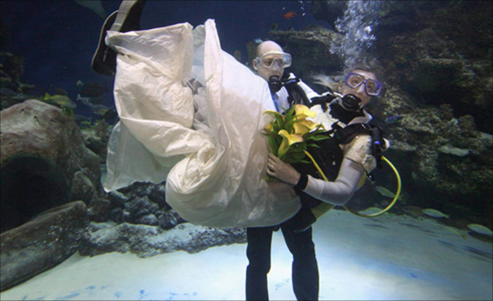 underwater marriage ceremony